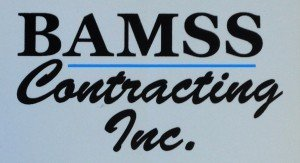 BAMSS blue logo. - Copy